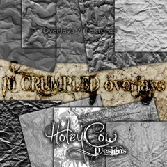 HOLEYCOW_CU_CRUMPLED_OVERLAYSpreview