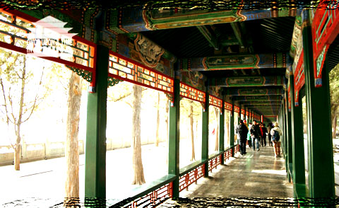 Long Corridor View