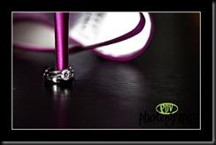 ring shot ev2