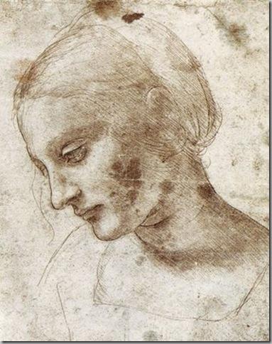 Leonardo Da Vinci Dibujos (6)