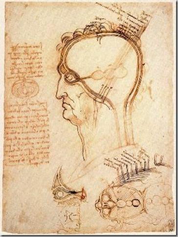 Leonardo Da Vinci Dibujos (1)