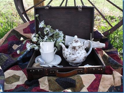 teapot outside 042