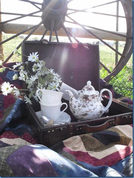 teapot outside 061