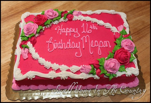 Megans 16th Birthday Party 090