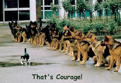 Voilà ce qui s'appelle du courage !