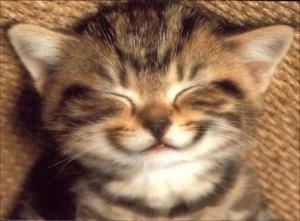 Un sourire
