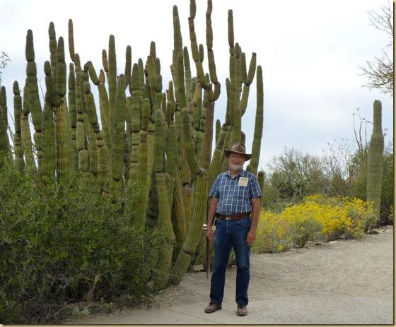 2010-04-16 - AZ, Tucson - Sonoran Desert Museum  (116)