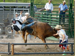 2010-07-28 -2- MT, Hungry Horse - Bull Riding  1013
