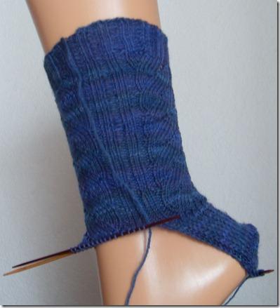 2011_02 Socke Artichoke