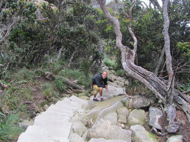 trekking Kinabalu in one day
