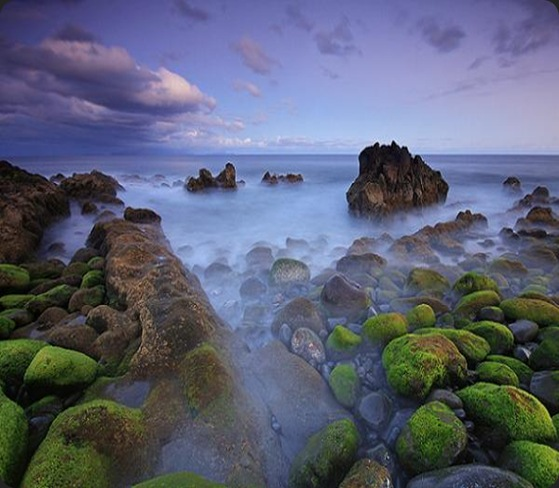 lobocas, las rocas