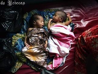 gemelos, nacieron con 640grs y 530grs.