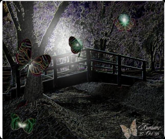 El puente de noche de la brujaMar