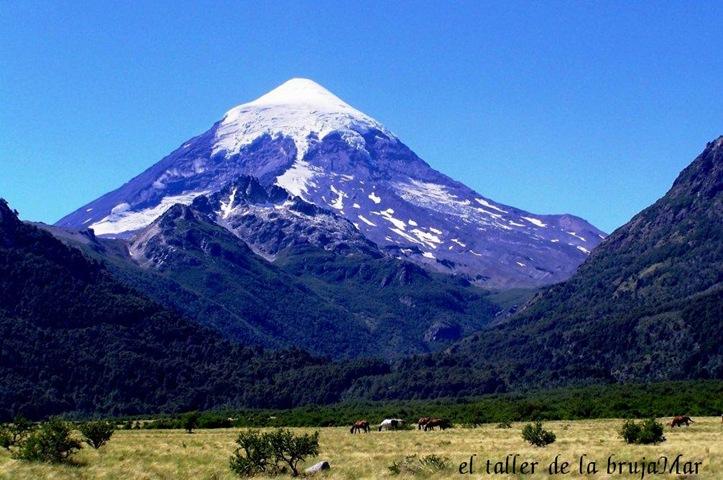 006ElTaller_campos Argentinos