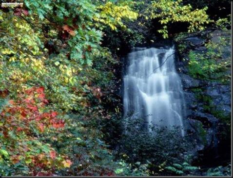 ELTALLERDELABRUJAMAR_Meigs Falls, Great Smoky Tennessee