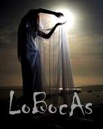 LoBocAs2011-1