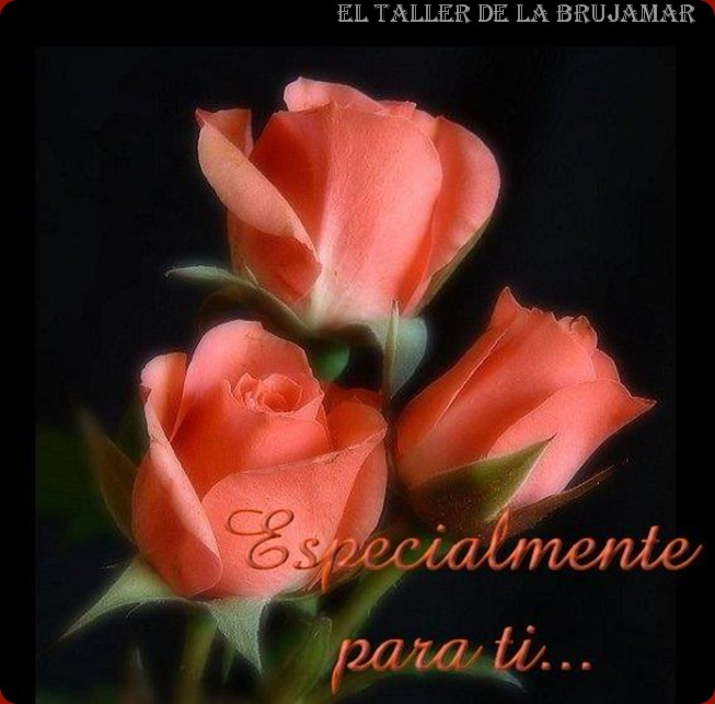FloresRojas-ElTallerdelabrujaMar0505