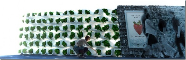 ecological-wall-10-600x193
