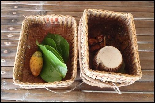 Tagbanua Betel Nut