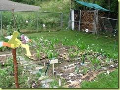 garden progress 05