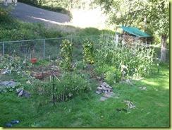 garden round 2 08