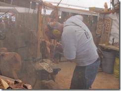 WA state fair 17
