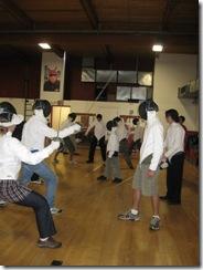 fencing 14