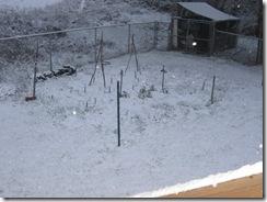 first snow  03