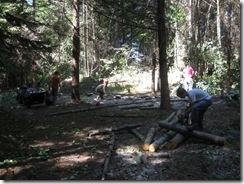 woodcutting 07