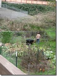 garden gone 08