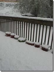 first snow 15