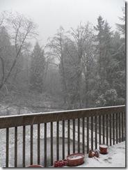 snow day 17
