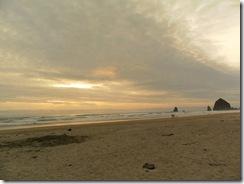 beach trip 21