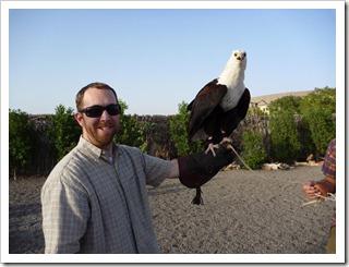 20110324 [P1020011] - Birds of Prey