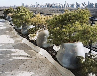 InsideCities17 Cómo diseñar un jardín... sin césped
