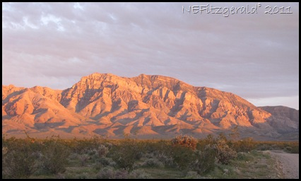 IMG_6233Virgin Mountains Southern Nevada