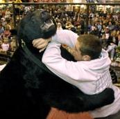 Ohio Bear Attack