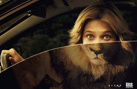 Lion-show