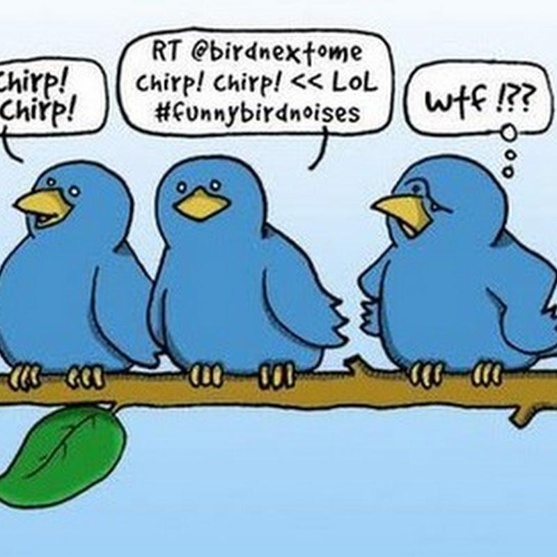 Yo uso Twitter… mis amigos no