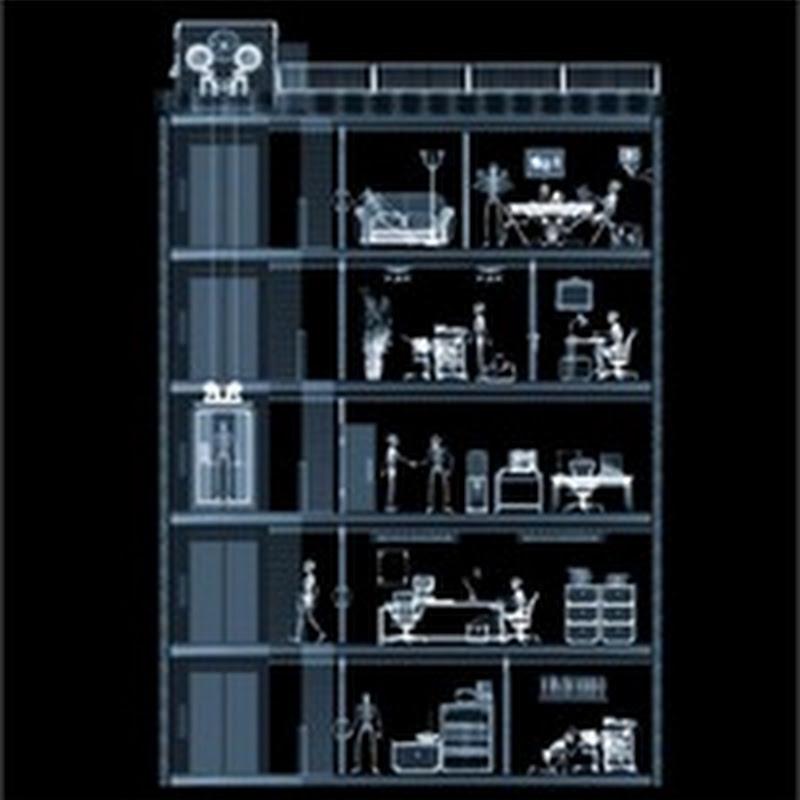 25 ejemplos de fotografías en rayos X