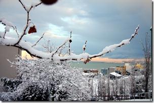 un cuore fra la neve-12