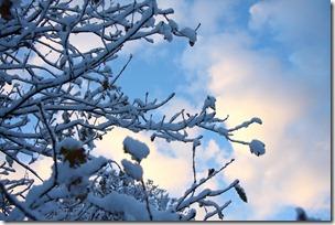 un cuore fra la neve-13