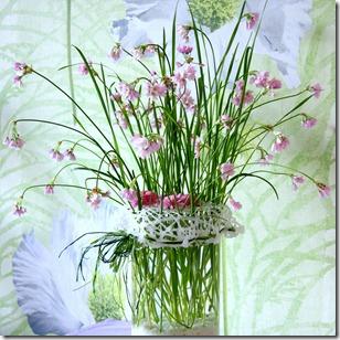 Reggi fiori-18