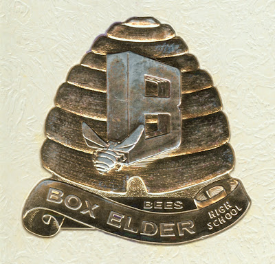 Box Elder High School Bees