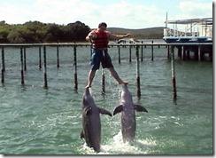 Это я в гостях у дельфинов на Кубе