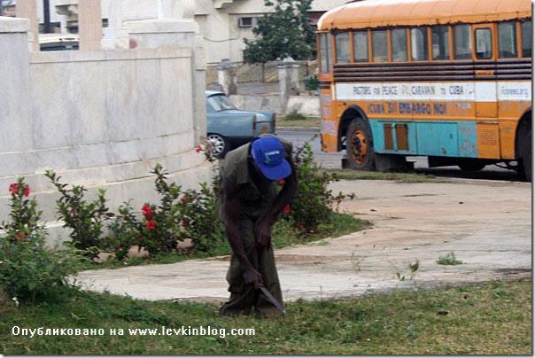 """Вот такую ручную """"газонокосилку"""" я увидел на Кубе"""