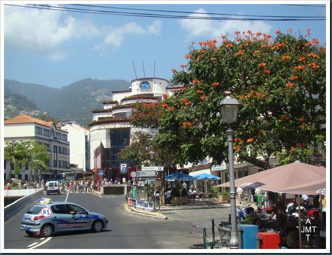 DSC03300-Funchal-place-de-l'autonomie vue vers le nord zoom BW