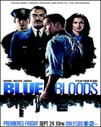 Download Série Blue Bloods 1ª Temporada Legendado