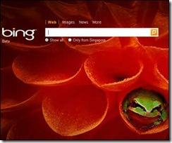 MS-Bing