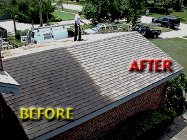 [roof_cleaning_picture[3].jpg]